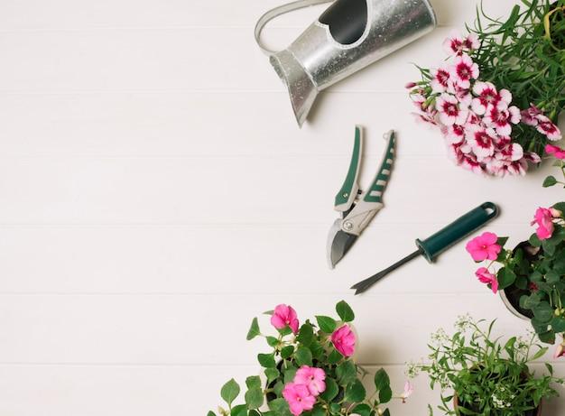 Fleurs roses avec des instruments de jardinage
