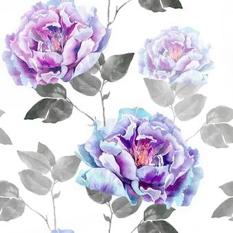 Fleurs roses de pivoine