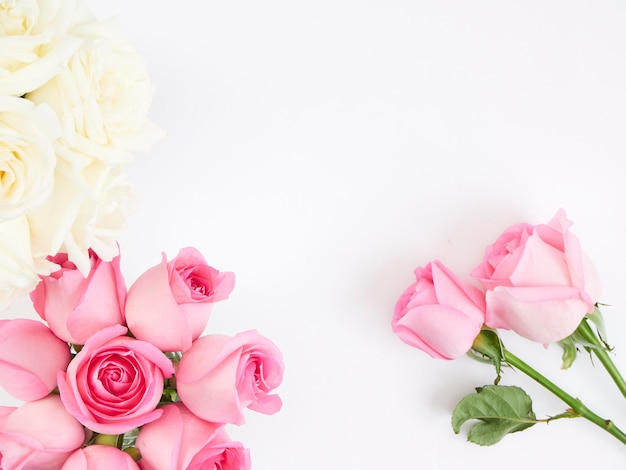 Fleurs roses roses et blanches