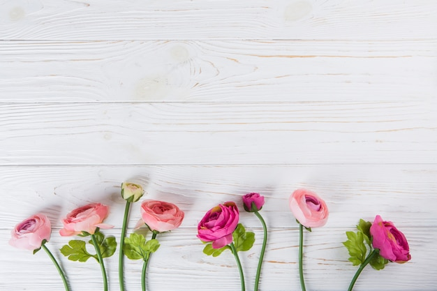 Fleurs roses roses dispersées sur une table en bois