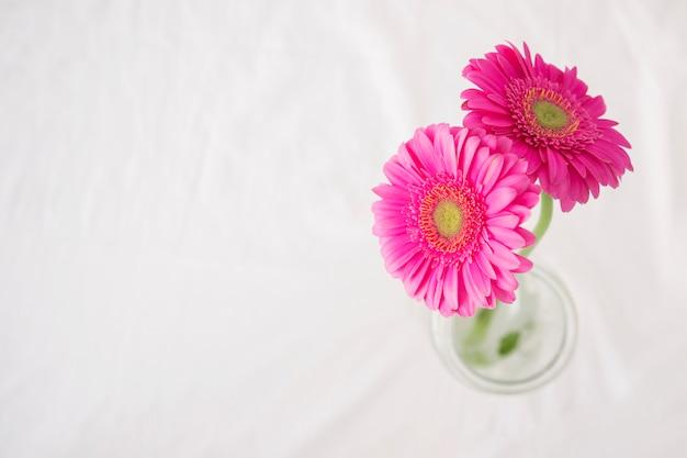 Fleurs roses avec des tiges vertes dans un vase
