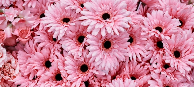 Fleurs roses utilisent pour le fond