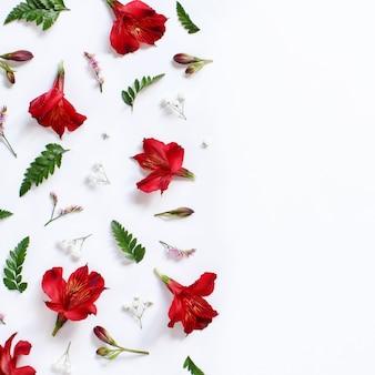 Fleurs rouges et feuilles sur une vue de dessus de fond blanc