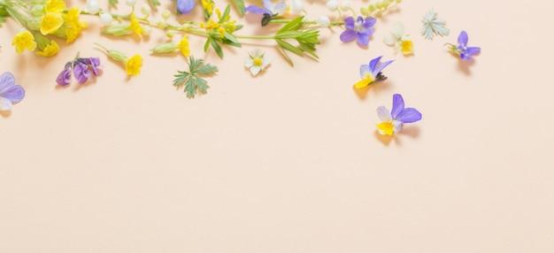 Fleurs sauvages colorées sur papier