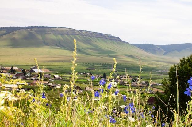 Fleurs sauvages sur fond de chaînes de montagnes et de villages de faible altitude. photo panoramique.