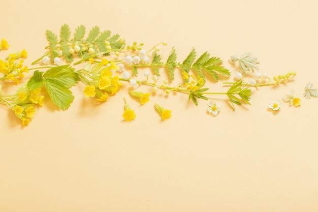 Fleurs sauvages sur fond de papier