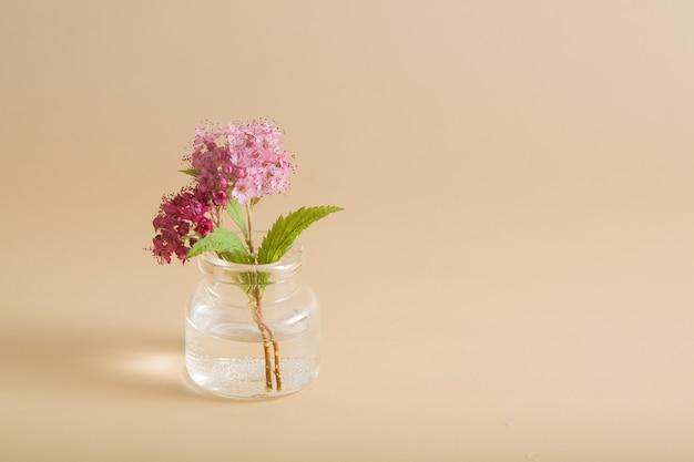 Fleurs sauvages roses miniatures dans une bouteille en verre sur une surface beige