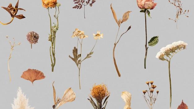 Fleurs séchées et feuilles à motifs