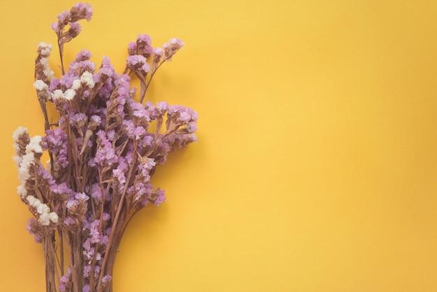 Fleurs séchées sur fond jaune avec espace de copie.