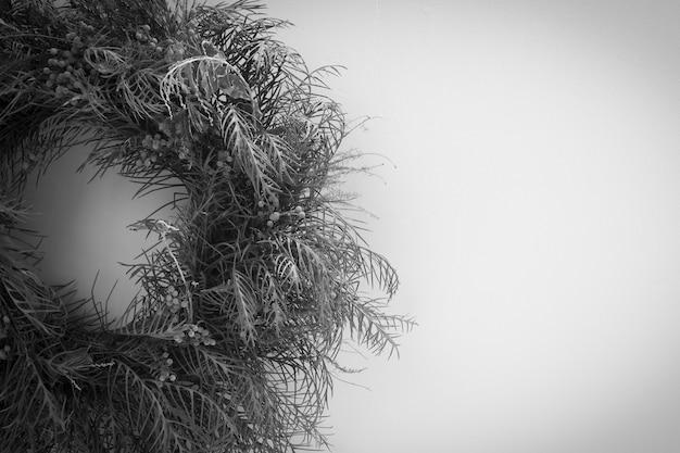 Fleurs sèches et smog sur fond blanc c'est une photo en noir et blanc