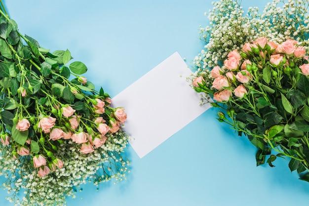 Fleurs de souffle de bébé et de roses avec une carte blanche vierge sur fond bleu