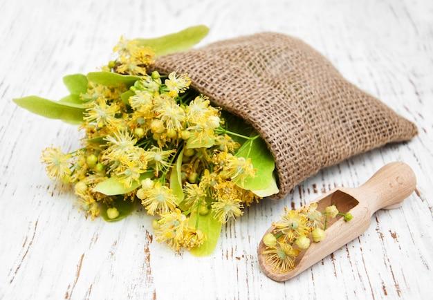 Fleurs de tilleul dans un sac en toile