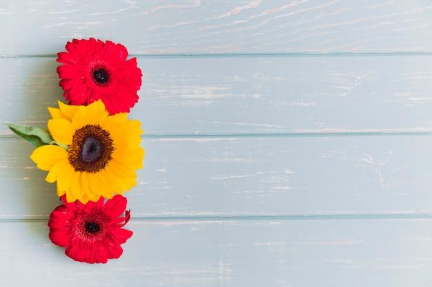 Fleurs de tournesol et de gerbera sur le dessus de table grunge