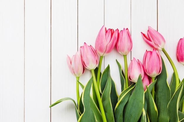 Fleurs de tulipes fraîches roses sur un mur en bois blanc. vue de dessus, espace copie