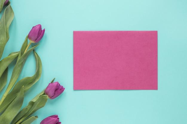 Fleurs de tulipes pourpres avec du papier sur la table bleue
