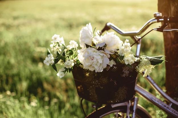 Fleurs et vélo dans le dos de la lumière ensoleillée