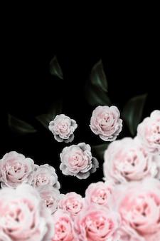 Fleurs vintage rose