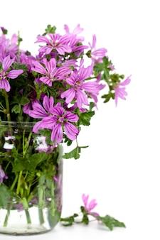 Fleurs violettes sauvages en pot de verre