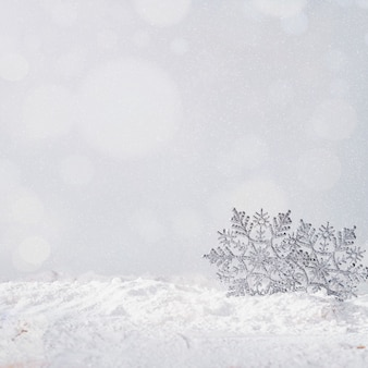 Flocons de neige sur la berge de la neige