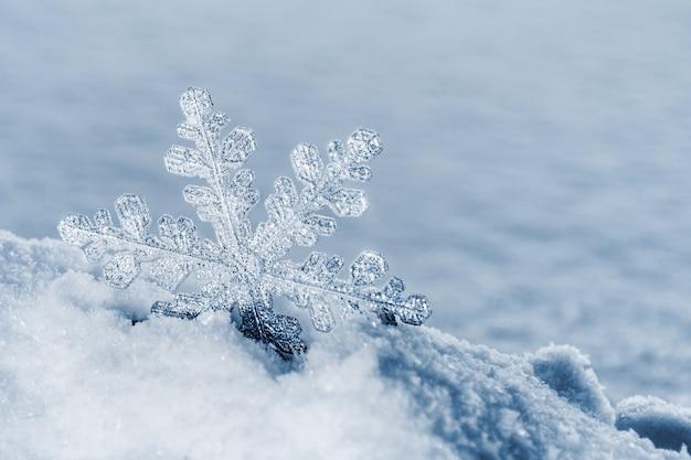 Flocons de neige de noël sur la neige