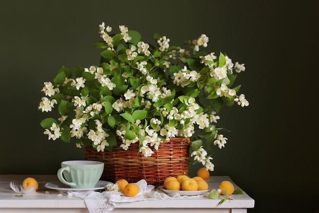 Floraison de branches de jasmin dans le panier et d'abricots