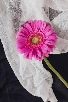 Floraison rose fraîche avec centre jaune près du textile blanc