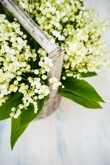 Floral de printemps