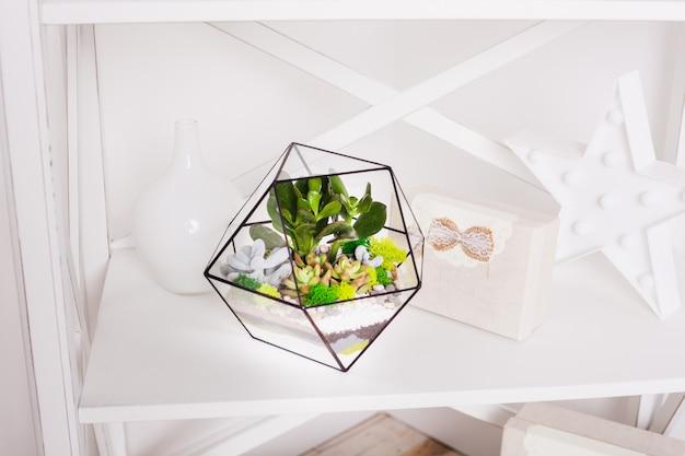 Florarium - composition de plantes succulentes, pierre, sable et verre, élément d'intérieur, décoration, terarium en verre