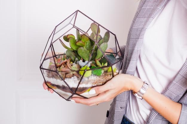 Florarium - composition de plantes succulentes, de pierre, de sable et de verre, élément d'intérieur, d