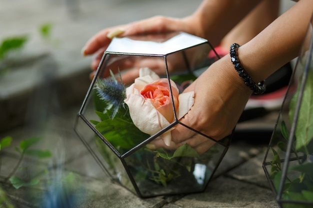 Florarium avec des fleurs fraîches succulentes et roses. flux de travail du fleuriste