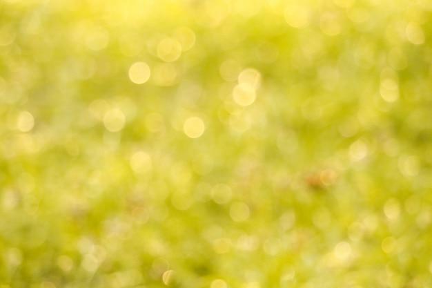 Flou de l'herbe dans la goutte d'eau de jardin sur les feuilles le matin