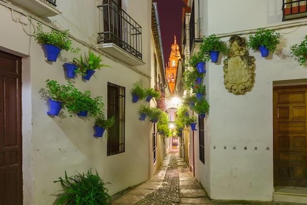 Flower street calleja de las flores cordoba, espagne