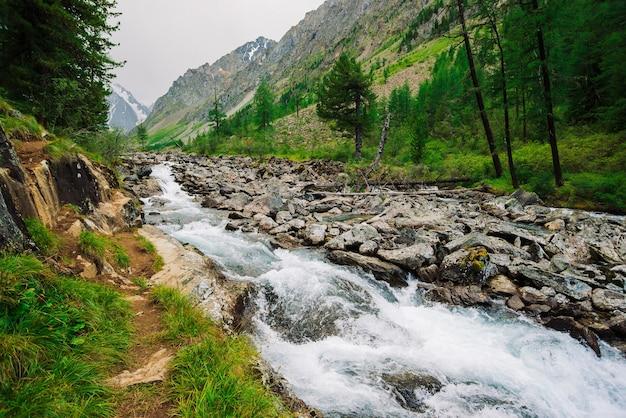 Flux d'eau rapide du glacier dans le ruisseau de montagne sauvage. pierres et rochers dans l'eau de source.