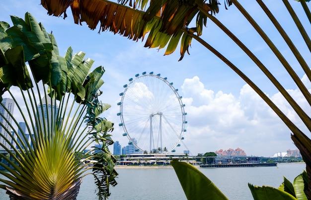 Flyer de singapour, grande roue
