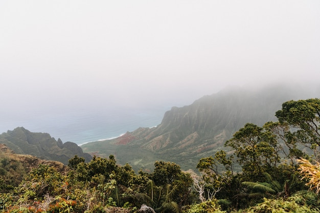 Foggy kōkeʻe state park à hawaii usa