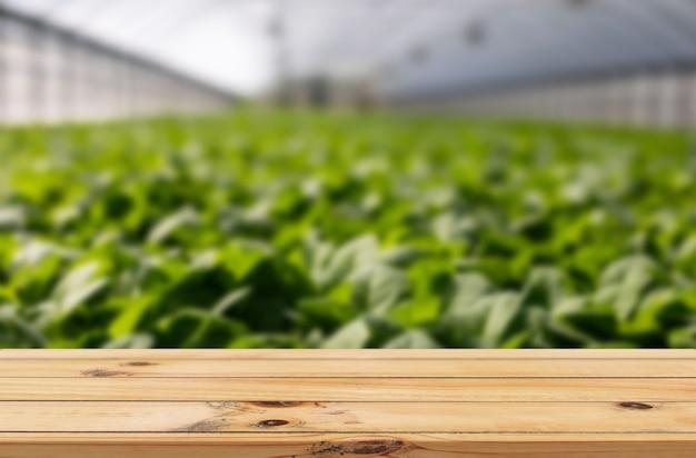 Fond d'agriculture en serre avec affichage de produits de table en bois