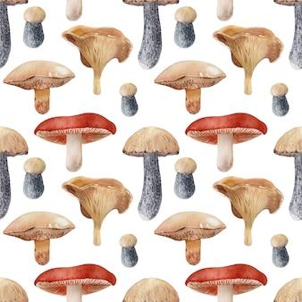 Fond d'aquarelle avec différentes sortes de champignons