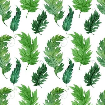 Fond aquarelle avec des feuilles vertes