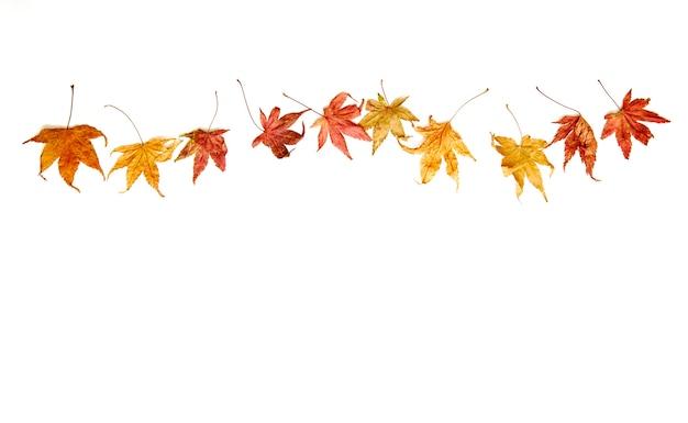 Fond d'automne chute des feuilles
