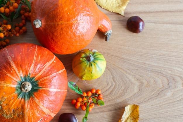 Fond d'automne avec des citrouilles et des feuilles oranges et des fruits de sorbier et de châtaignier