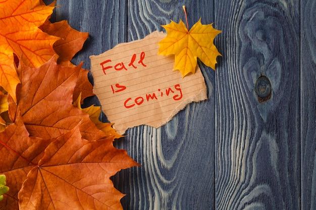 Fond d'automne / feuilles d'automne sur fond de bois