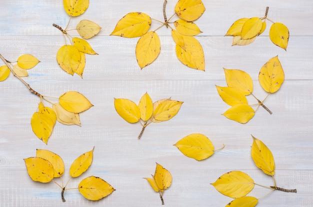 Fond d'automne, feuilles jaunes sur gris teint en bois.