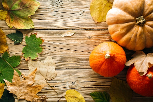 Fond d'automne, feuilles mortes et citrouilles