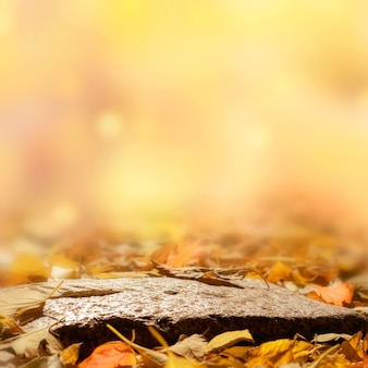 Fond d'automne avec des feuilles. podium naturel sur un fond d'automne flou.