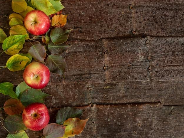 Fond d'automne avec des pommes de ferme mûres avec des feuilles colorées sur fond d'écorce d'arbre naturel.