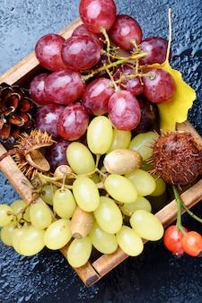 Fond d'automne avec des raisins.