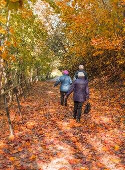 Fond d'automne vertical avec des feuilles d'érable tombées. trois personnes âgées marchant dans le parc, vue de l'arrière.
