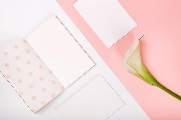 Fond blanc de carte postale fleur rose kalla