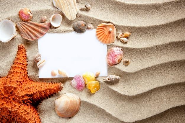 Fond blanc espace été étoiles de mer coquilles de sable