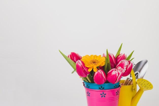 Fond blanc avec des fleurs colorées et des outils de jardinage